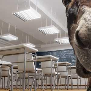 Fracaso escolar alumnos altas capacidades
